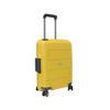 BSICD- yellow2